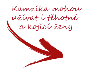 Kamzík_arrow