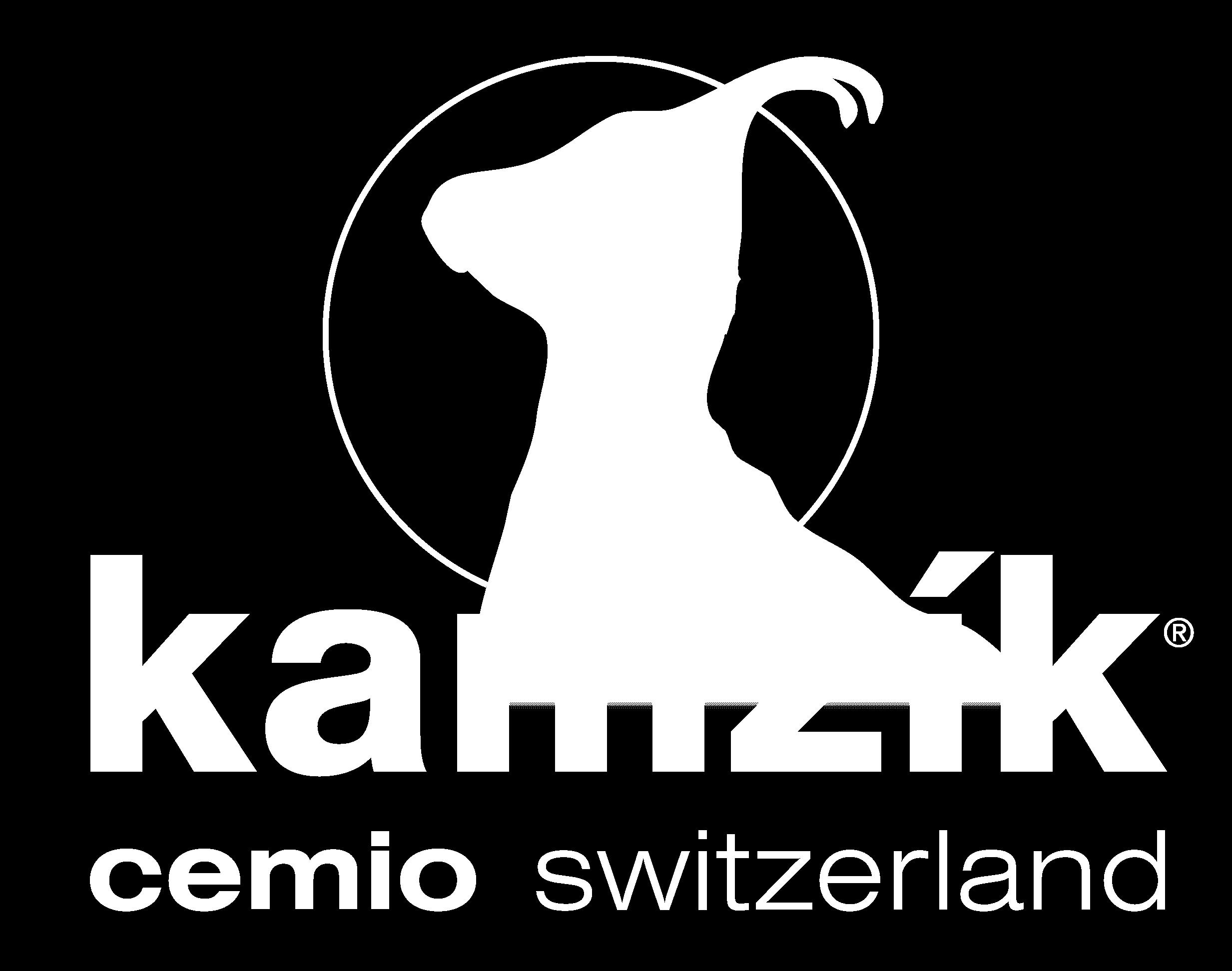 logo_CEM
